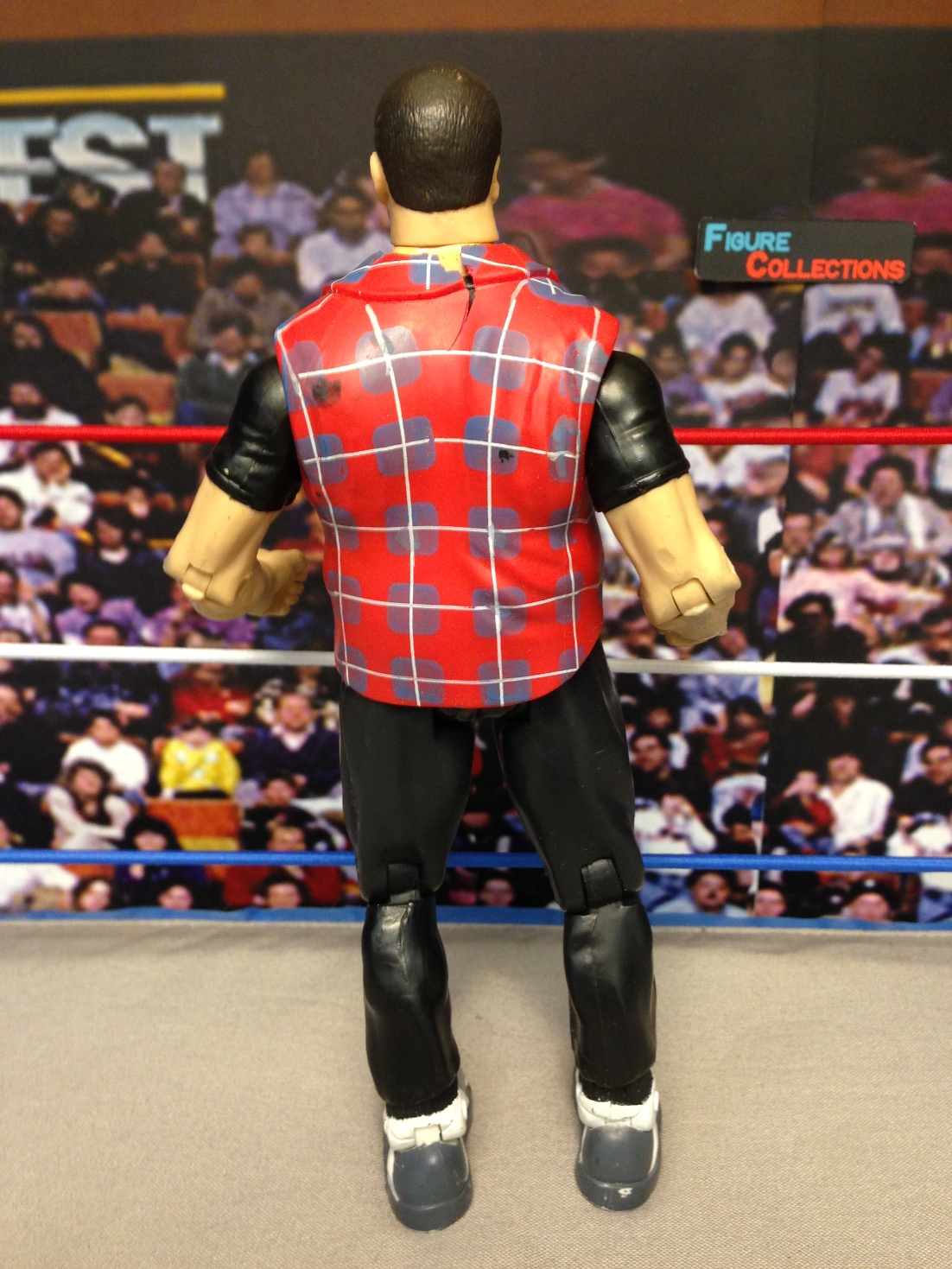 Back in the Ring (Undertaker, Mick Foley, Steve Austin)